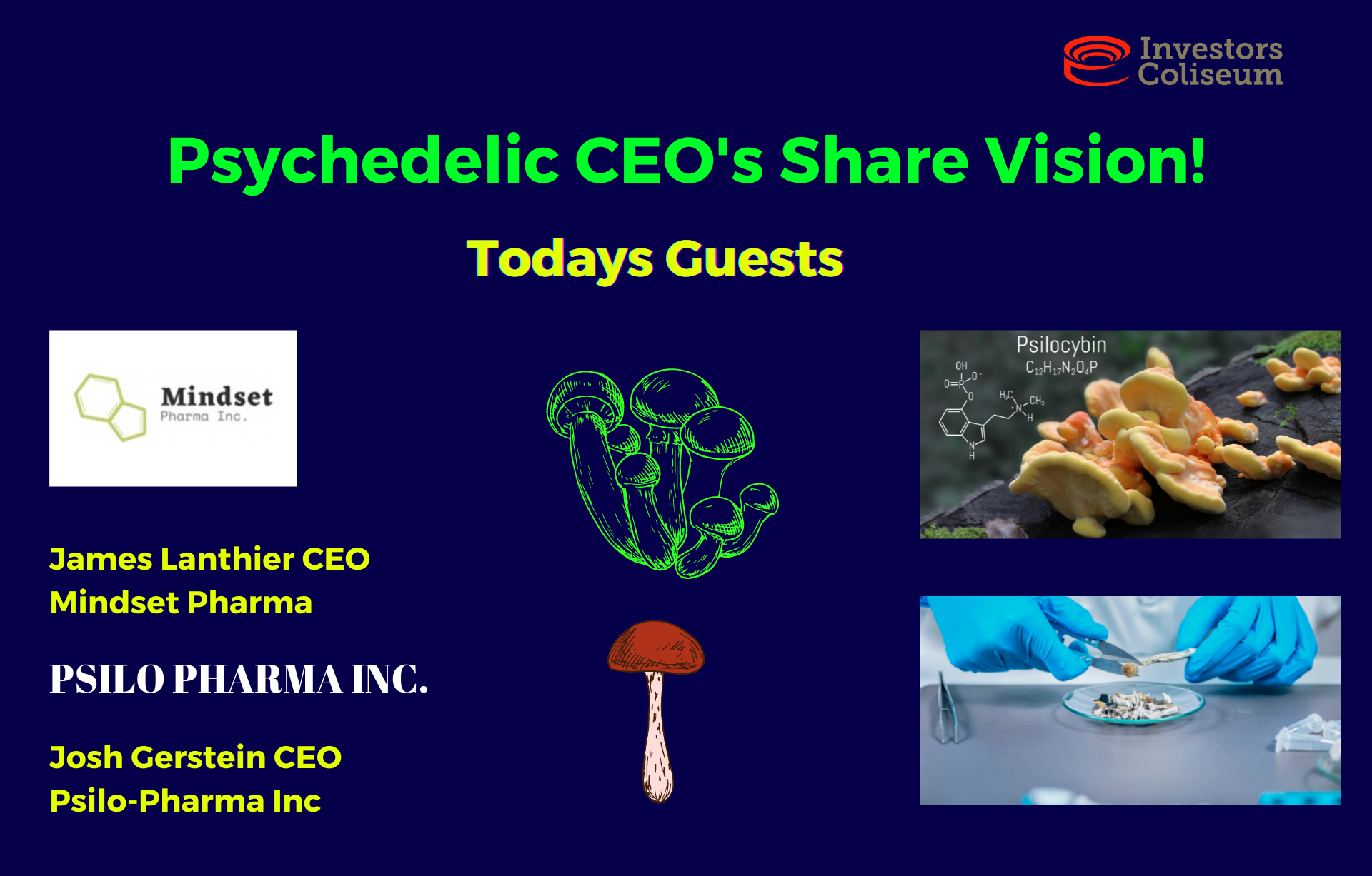 EP. 7: Psychedelics CEO's Share Vision of this EXTREMELY HOT SECTOR !