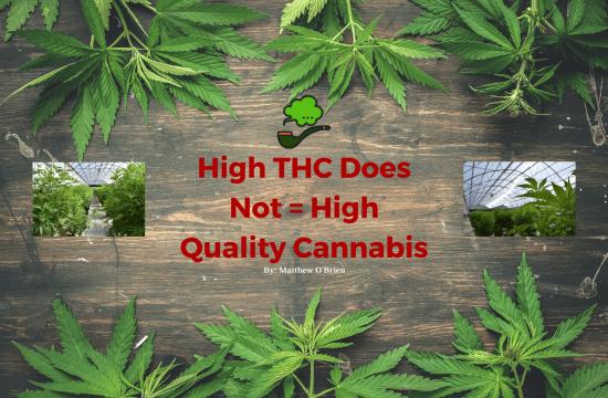 High THC Blog